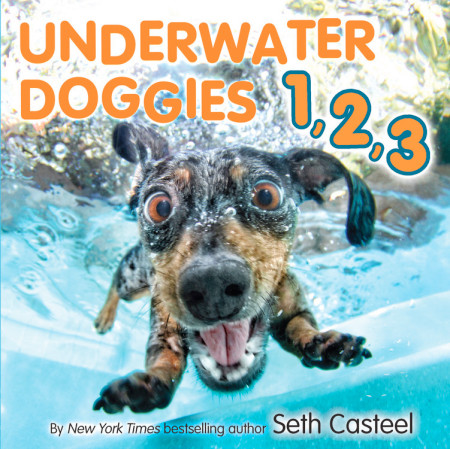 "Cover image of ""Underwater Doggies 1, 2, 3,"" a board book by Seth Casteel"