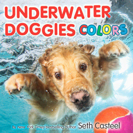 "Cover image of ""Underwater Doggies Colors,"" a board book by Seth Casteel"